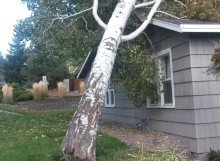 wind storm damage bend oregon