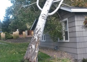 wind storm damage bend oregon